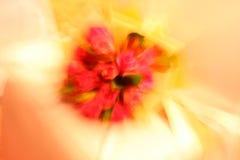 Bouquet de Rose, vitesse de volet lente et explosion Images stock
