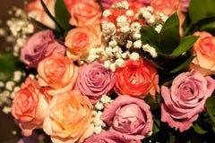Bouquet de rouge, de rose et de plan rapproché crème de roses photo stock
