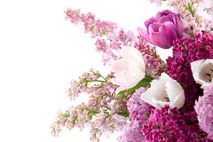 Bouquet de source Photographie stock