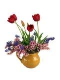 Bouquet de source Photographie stock libre de droits