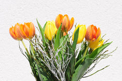Bouquet de tulipe Photographie stock