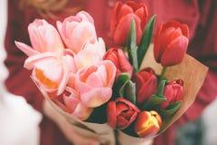 Bouquet de tulipe Photographie stock libre de droits