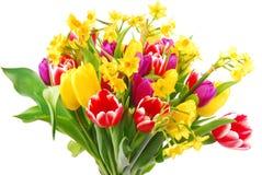 Bouquet de tulipe et de jonquille Images stock