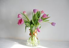 Bouquet de tulipes de fleurs dans le décanteur de cruche de café sur la table blanche en soleil Fond blanc Rose et bourgeons lila images libres de droits