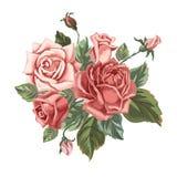 Bouquet de vintage avec des roses Photo libre de droits