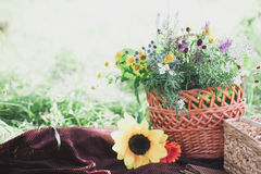Bouquet de Wildflowers dans le vase en verre sur le fond en bois Photos stock