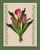 Bouquet de zantedeschias sur la toile   Photographie stock