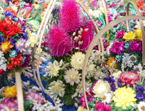 Bouquet of decorative dried flowers Stock Images