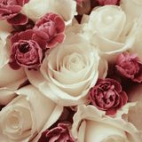 Bouquet of decorative red roses in glass vase Royalty Free Stock Image
