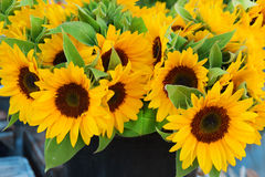 Bouquet with decorative sunflowers Royalty Free Stock Photography