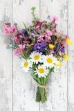 Bouquet del Wildflower Fotografia Stock
