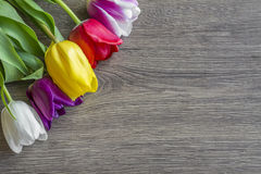 Bouquet delicate colored tulips on the table Royalty Free Stock Images