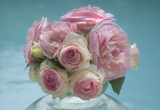 Bouquet of Delicate Pink Roses stock photo