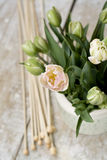 Bouquet of delicate pink tulips with knitting needles and yarn balls Royalty Free Stock Photos