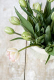 Bouquet of delicate pink tulips on a wooden background Stock Photos