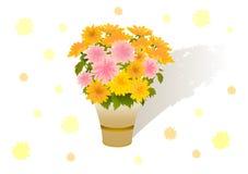 Bouquet des asters Illustration de Vecteur