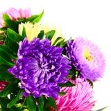 Bouquet des asters Images stock