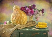 Bouquet des asters photos libres de droits