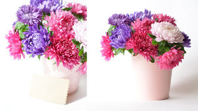 Bouquet des asters dans un seau décoratif Images libres de droits