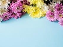 Bouquet des chrysanthèmes multicolores sur un endroit bleu de fond pour le texte Images stock
