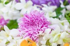 Bouquet des chrysanthèmes pourpres de fleurs avec l'orchidée Photo libre de droits