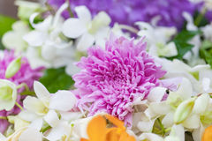 Bouquet des chrysanthèmes pourpres de fleurs avec l'orchidée Photos stock