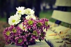 Bouquet des chrysanthèmes se trouvant sur le banc Photographie stock libre de droits