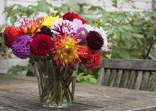 Bouquet des dahlias Image stock