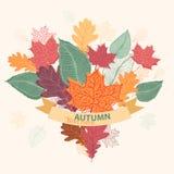 Bouquet des feuilles colorées d'automne attachées avec le ruban Photo libre de droits