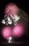 Bouquet des feux d'artifice roses Photographie stock libre de droits