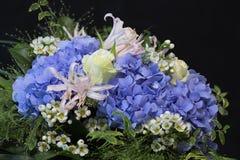 bouquet bleu d 39 hortensia photos stock image 29439203. Black Bedroom Furniture Sets. Home Design Ideas