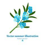 Bouquet des fleurs bleues de myosotis Photo stock