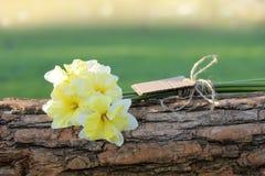 Bouquet des fleurs dans le soleil de soirée Image libre de droits