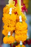Bouquet des fleurs dans pots image stock