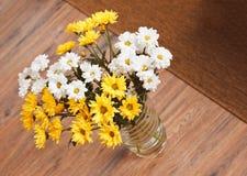 Bouquet des fleurs de camomille images libres de droits
