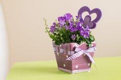 Bouquet des fleurs de campanule dans le pot Images libres de droits
