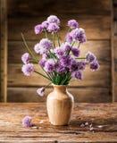 Bouquet des fleurs de ciboulette d'oignon Image libre de droits