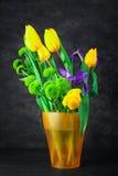 Bouquet des fleurs de ressort dans un vase Photos libres de droits