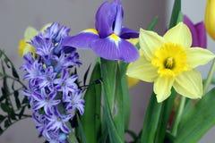 Bouquet des fleurs de source image stock