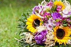Bouquet des fleurs de source photos libres de droits