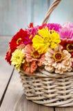 Bouquet des fleurs de zinnia dans le panier en osier Image stock