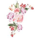 Bouquet des fleurs, des baies, des groseilles et des framboises de pivoine watercolor Photos stock