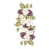 Bouquet des fleurs et des mûres watercolor Photographie stock libre de droits