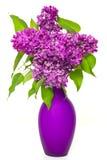 Bouquet des fleurs lilas dans le vase photographie stock