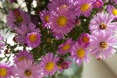 Bouquet des fleurs roses Image libre de droits