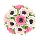 Bouquet des fleurs roses et blanches d'anémone Illustration de vecteur Photos libres de droits