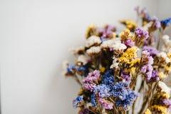 Bouquet des fleurs sèches et colorées se trouvant sur un fond blanc de la table Endroit pour le texte et la conception Photographie stock