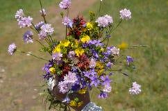 Bouquet de fleurs sauvages photographie stock libre de droits image 15024117 - Bouquet de fleurs sauvages ...