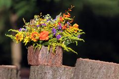 Bouquet des fleurs sauvages et des feuilles de fougère image libre de droits
