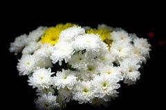 Bouquet des fleurs sur le fond noir image libre de droits